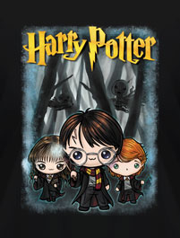 HARRY POTTER - HARRY, RON, HERMIONE ...